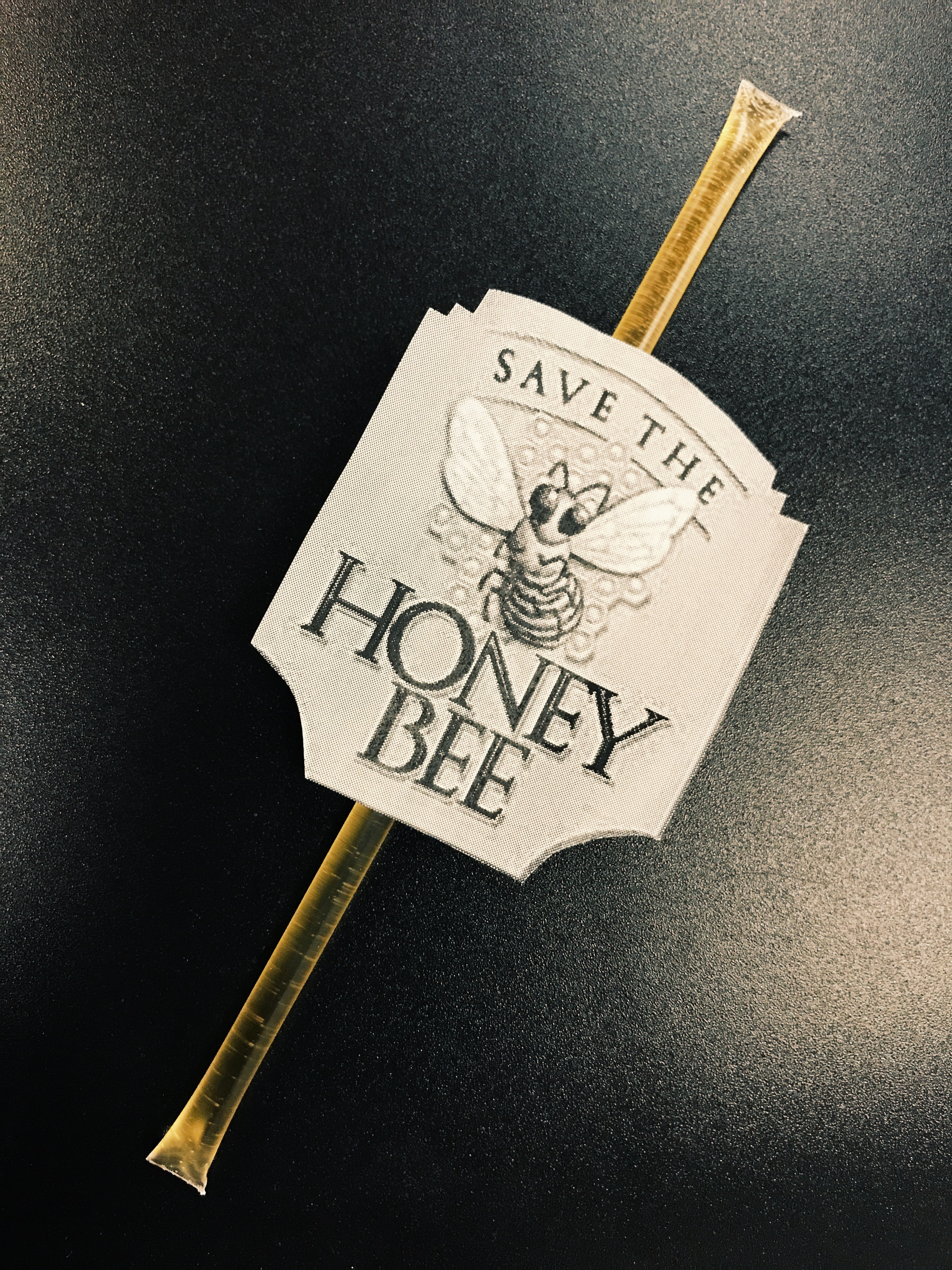 Phoenix Public Speaking visual aids save the honey bees